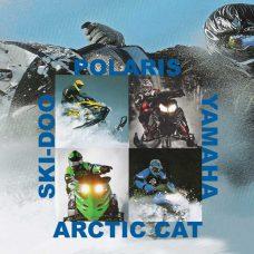 2 & 4 Cycle Snowmobile