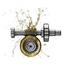 Worm Gear Oils